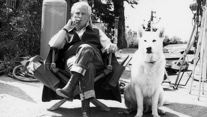 """Samuel Fuller, ya anciano pero activo, con su pichicho actor del feroz """"Perro blanco"""", recordada película sobre la destrucción biológica desatada."""
