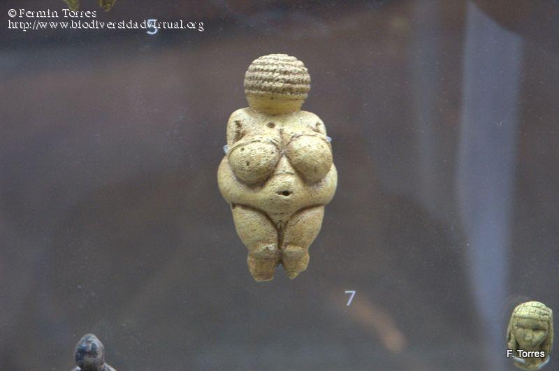 Venus Paleolítica de Willendorf