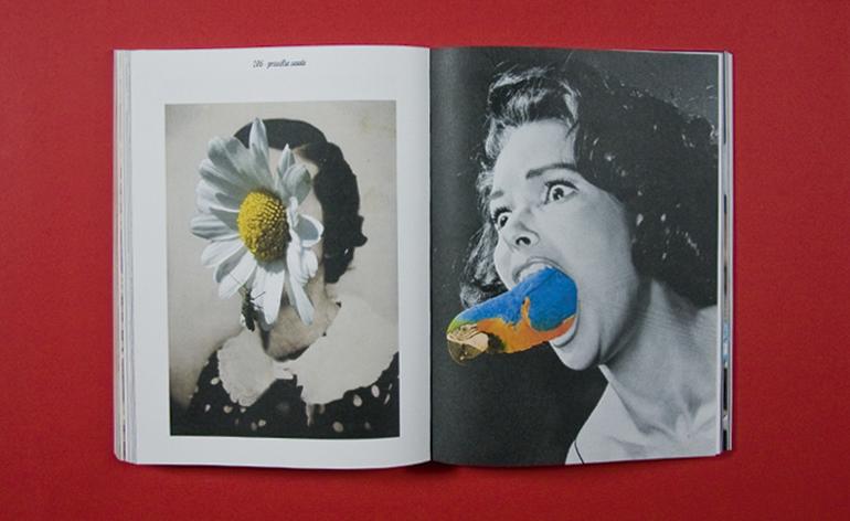 Sans titre series, by Priscilla Saada, 2011