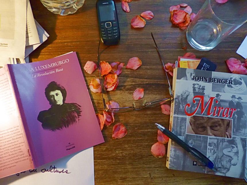 Pobre Rosa. Rosa Luxemburgo. Hay que leer a Rosa, seguir su corta vida, no solo a Frida Khalo. Y cómo mirar junto a John Berger. No todos saben mirar. Amilcar Moretti.