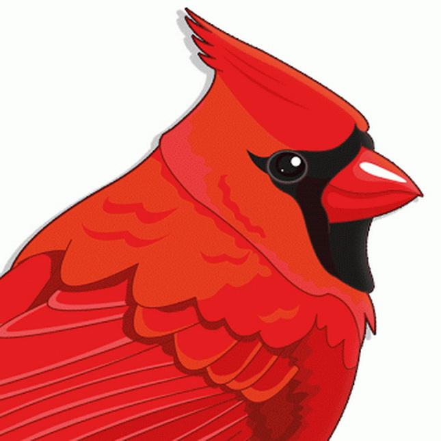 Pájaro Rojo