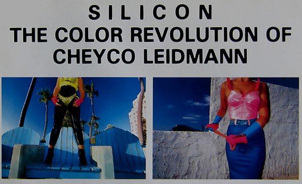 CheycoLeidmannSilicon